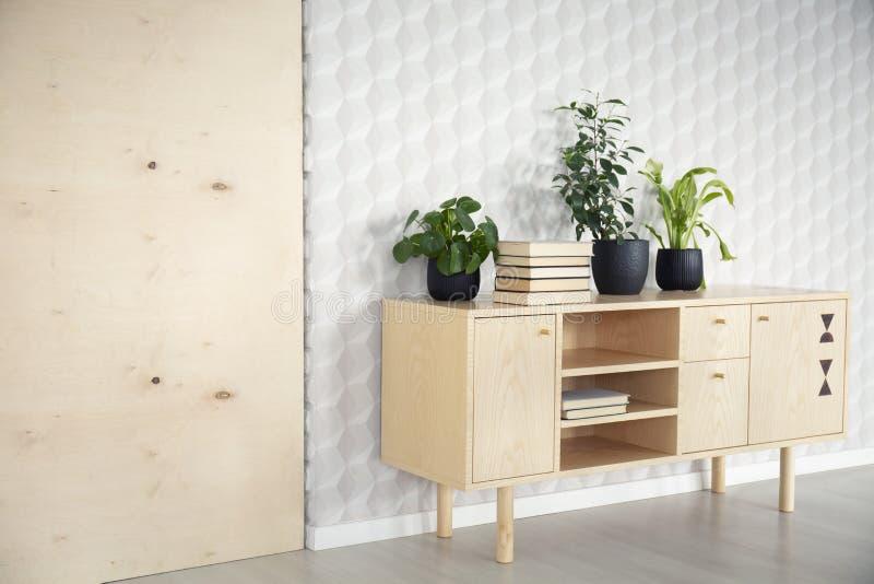 Εγκαταστάσεις και βιβλία στο ξύλινο ντουλάπι στο φυσικό εσωτερικό καθιστικών με την ταπετσαρία Πραγματική φωτογραφία στοκ φωτογραφία με δικαίωμα ελεύθερης χρήσης