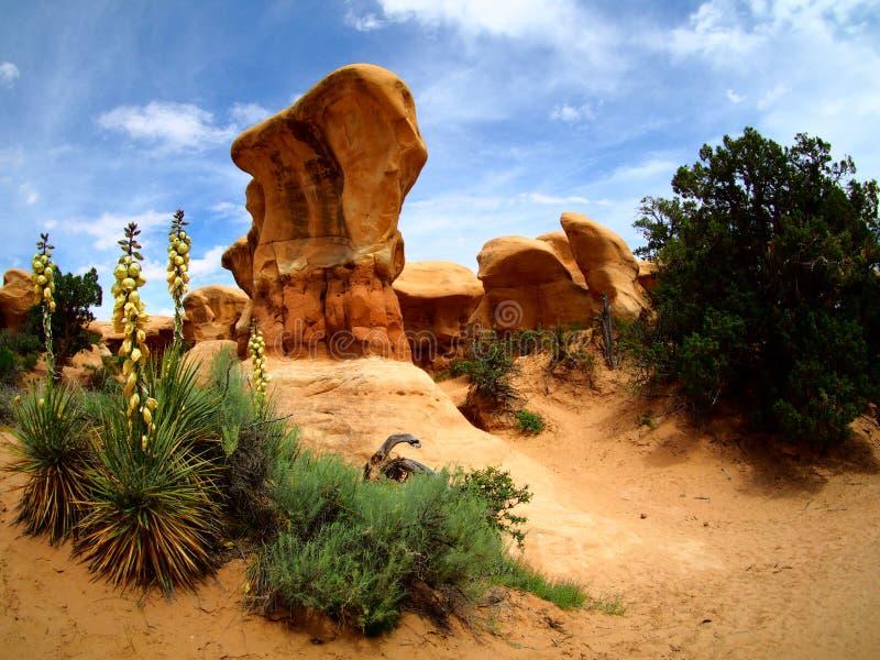 Εγκαταστάσεις και hoodoos Yucca στο τοπίο ερήμων ψαμμίτη Escalante, Γιούτα στοκ εικόνα
