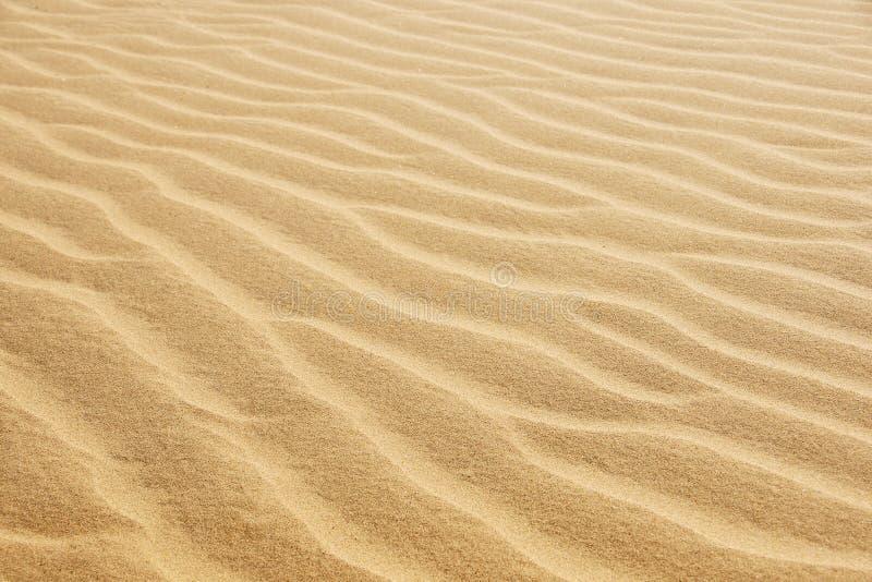 Εγκαταλείψτε την άμμο στοκ φωτογραφία