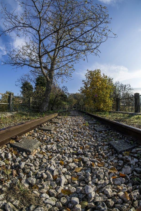 Εγκαταλειμμένος σιδηρόδρομος στοκ εικόνα με δικαίωμα ελεύθερης χρήσης