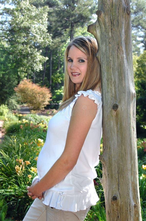 εγκυμοσύνη ομορφιάς στοκ εικόνα με δικαίωμα ελεύθερης χρήσης