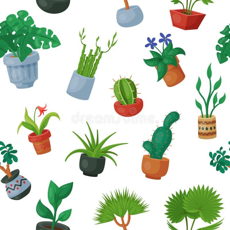 Εγχώριες εγκαταστάσεις flowerpots στα σε δοχείο flowery houseplants για τους εσωτερικούς floral κάκτους συλλογής διακοσμήσεων βοτ διανυσματική απεικόνιση