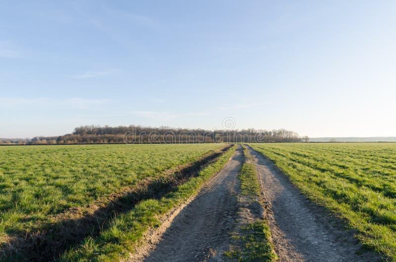 Εθνική οδός μέσω ενός πράσινου τομέα μέχρι την εποχή άνοιξης στοκ φωτογραφία με δικαίωμα ελεύθερης χρήσης