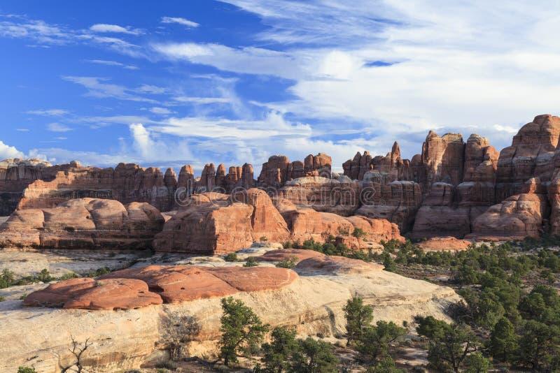 Εθνική περιοχή βελόνων πάρκων Canyonlands στοκ φωτογραφίες