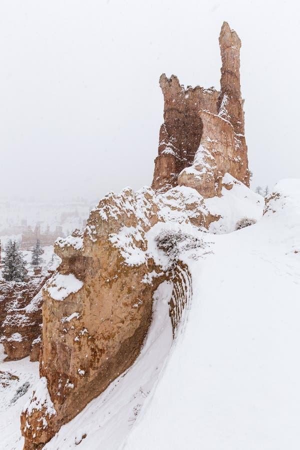 Εθνική πτώση Hoodoo χιονιού πάρκων φαραγγιών του Bryce στοκ εικόνα
