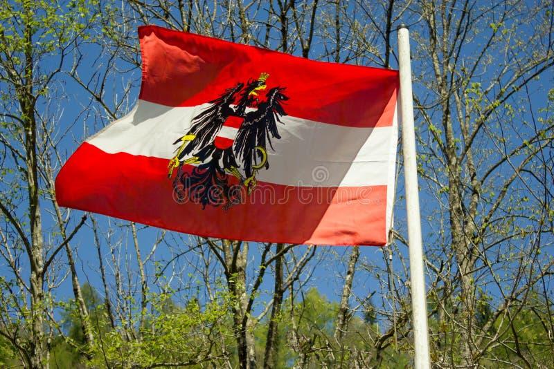 Εθνική σημαία της Αυστρίας με τον ομοσπονδιακό αετό στοκ φωτογραφία με δικαίωμα ελεύθερης χρήσης