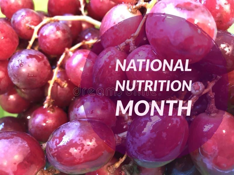 Εθνικός μήνας διατροφής στοκ εικόνες