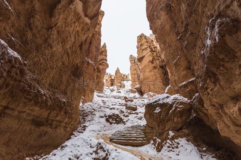 Εθνικό ίχνος χιονιού Hoodoo πάρκων φαραγγιών του Bryce στοκ φωτογραφία με δικαίωμα ελεύθερης χρήσης