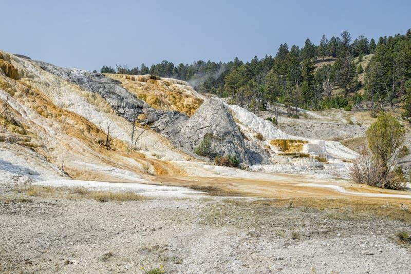 Εθνικό ασβέστιο πάρκων Yellowstone στοκ εικόνες