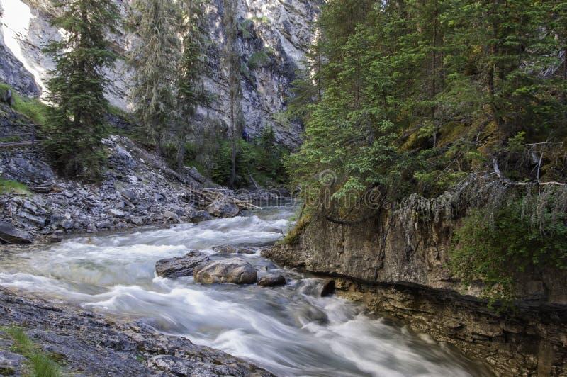 Εθνικό πάρκο Αλμπέρτα Καναδάς Banff φαραγγιών Johnston στοκ εικόνες