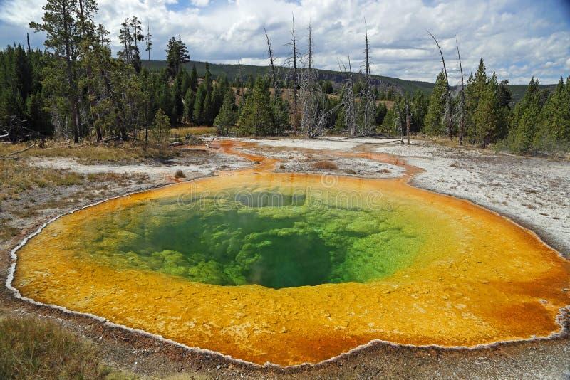 Εθνικό πάρκο ΗΠΑ Yellowstone στοκ εικόνα