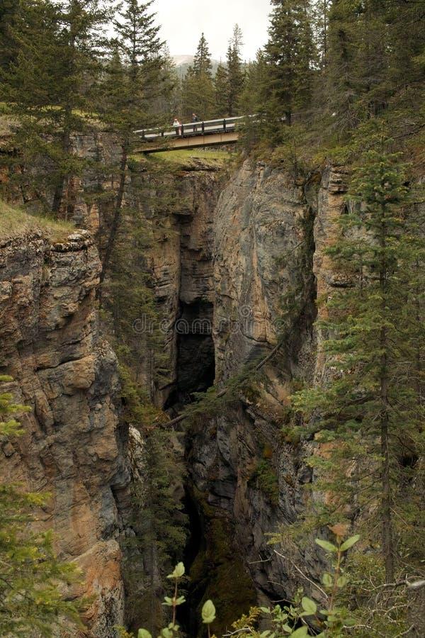 Εθνικό πάρκο ιασπίδων, Αλμπέρτα, Καναδάς. στοκ φωτογραφίες