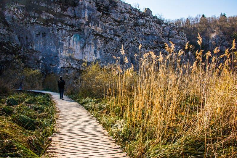 Εθνικό πάρκο λιμνών Plitvice με έναν θεατή στοκ φωτογραφίες με δικαίωμα ελεύθερης χρήσης