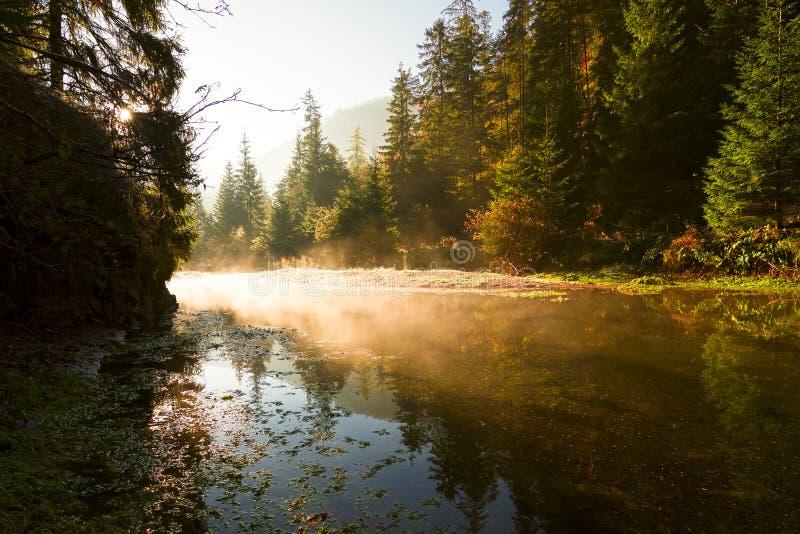 εθνικό πάρκο σλοβάκικη Σλοβακία παραδείσου στοκ φωτογραφία με δικαίωμα ελεύθερης χρήσης