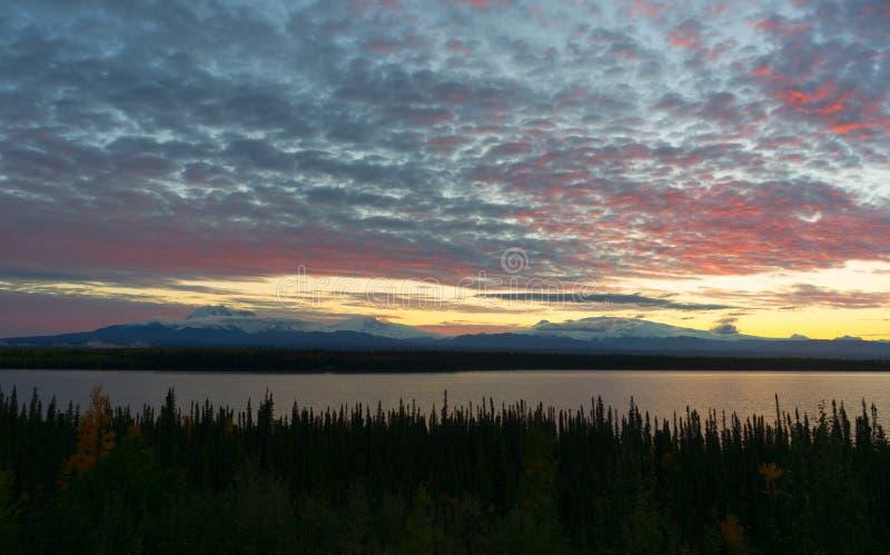Εθνικό πάρκο της νοτιοανατολικής Αλάσκας Wrangell ST Elias λιμνών ιτιών στοκ φωτογραφία με δικαίωμα ελεύθερης χρήσης