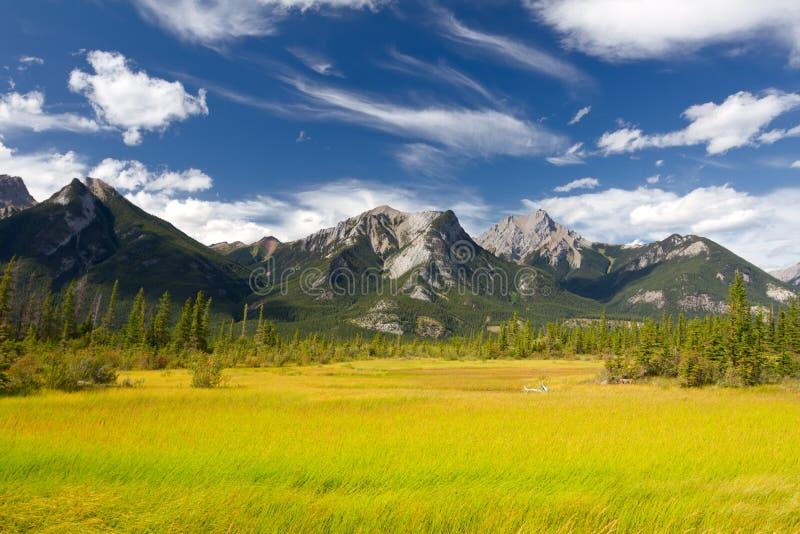εθνικό πάρκο τοπίων ιασπίδων Αλμπέρτα καναδικό στοκ εικόνες