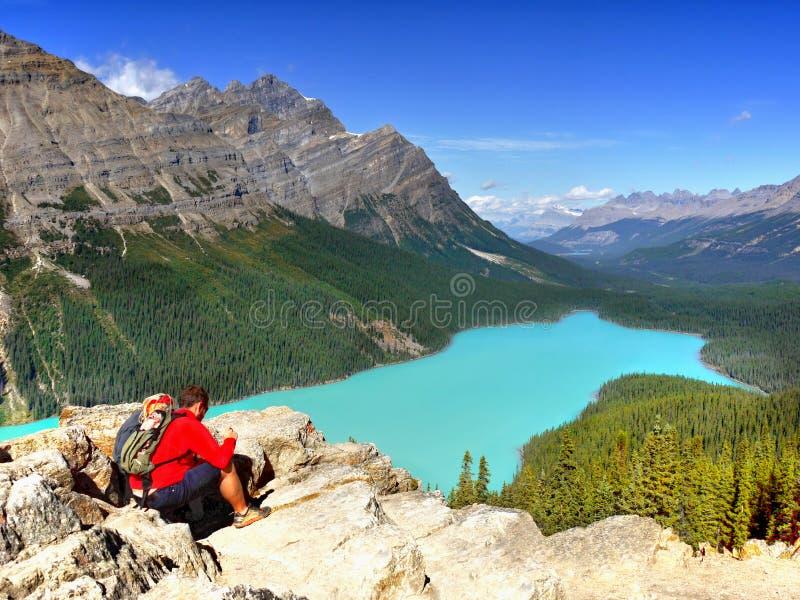 Εθνικό πάρκο Banff λιμνών Peyto οδοιπόρων, Καναδάς στοκ εικόνα με δικαίωμα ελεύθερης χρήσης