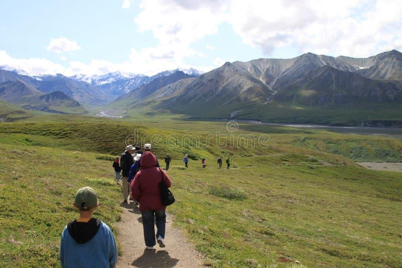 Εθνικό πάρκο Denali στοκ φωτογραφία με δικαίωμα ελεύθερης χρήσης