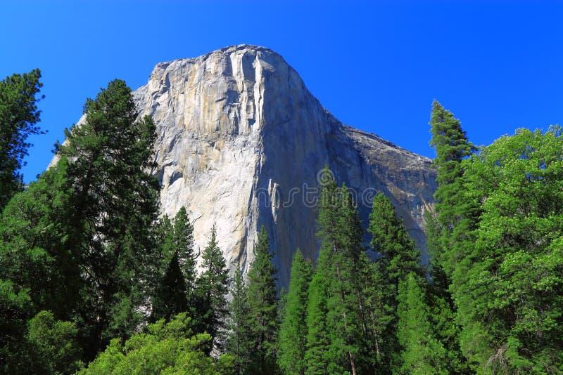 Εθνικό πάρκο EL Capitan Yosemite στοκ φωτογραφίες με δικαίωμα ελεύθερης χρήσης