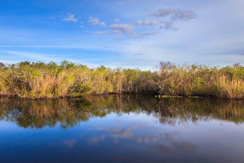 Εθνικό πάρκο Everglades στοκ εικόνα