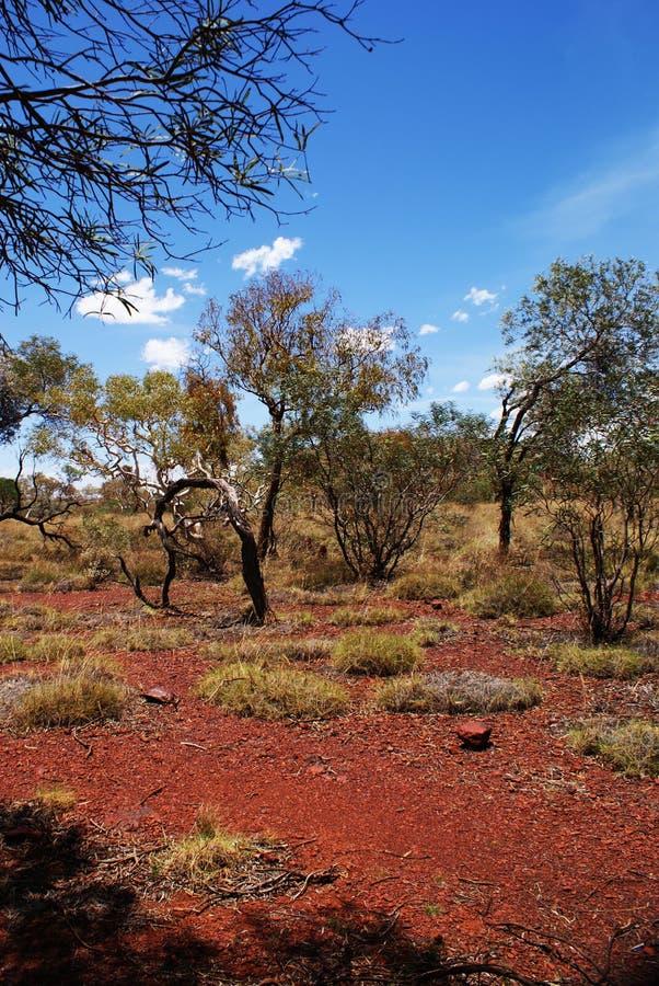 εθνικό πάρκο karijini wa στοκ εικόνα με δικαίωμα ελεύθερης χρήσης
