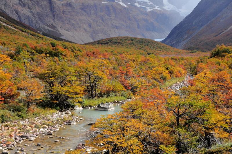 Εθνικό πάρκο Los Glaciares. στοκ εικόνες με δικαίωμα ελεύθερης χρήσης