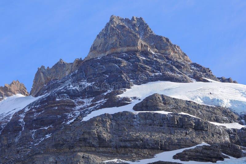 Εθνικό πάρκο Los Glaciares. στοκ εικόνες