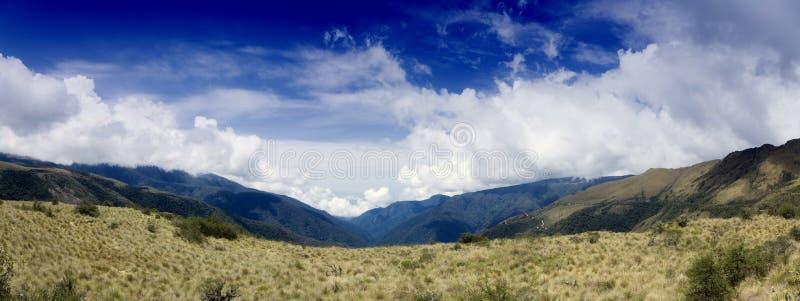 εθνικό πάρκο manu στοκ εικόνες με δικαίωμα ελεύθερης χρήσης