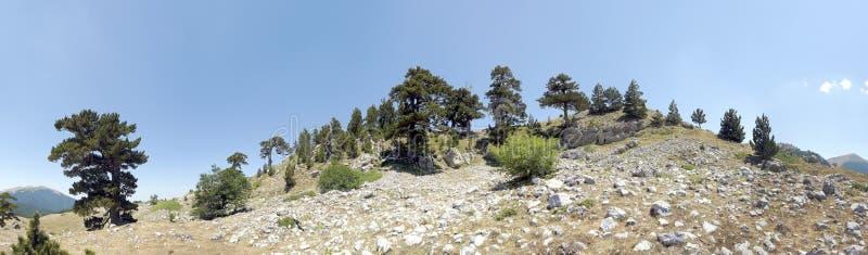 Εθνικό πάρκο Pollino στοκ εικόνα με δικαίωμα ελεύθερης χρήσης