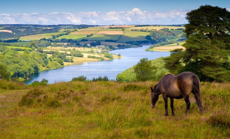 Εθνικό πάρκο Somerset Exmoor λιμνών Wimbleball στοκ φωτογραφία