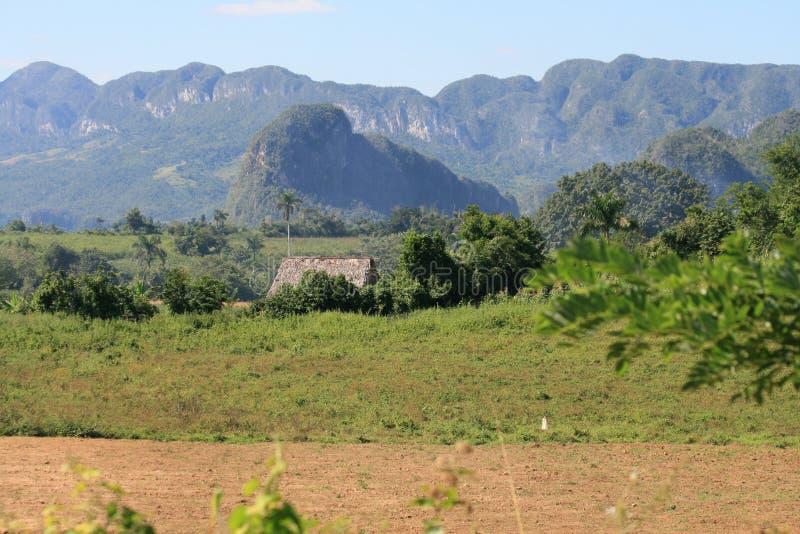 Download εθνικό πάρκο vinales στοκ εικόνα. εικόνα από δέντρα, πάρκο - 13189073