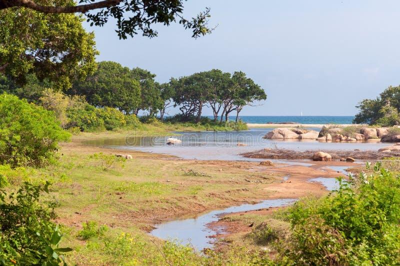 Εθνικό πάρκο Yala στη Σρι Λάνκα στοκ φωτογραφία με δικαίωμα ελεύθερης χρήσης