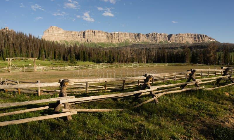 Εθνικό πρόσθιο μέρος Shoshone σειράς βουνών απότομων βράχων λατυποπαγούς λιμνών ρυακιών στοκ εικόνες
