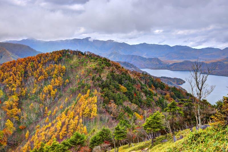 Εθνικό δρυμός Nikko στην Ιαπωνία στοκ εικόνες