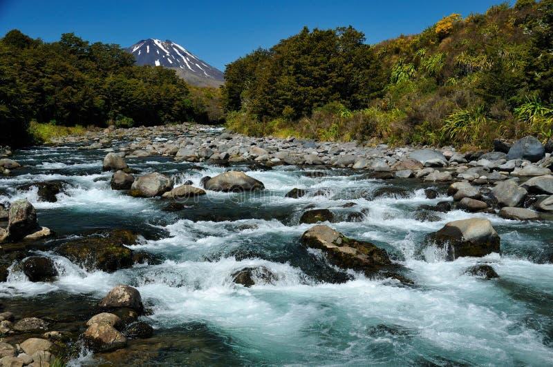 εθνικό tongariro πάρκων στοκ εικόνες με δικαίωμα ελεύθερης χρήσης