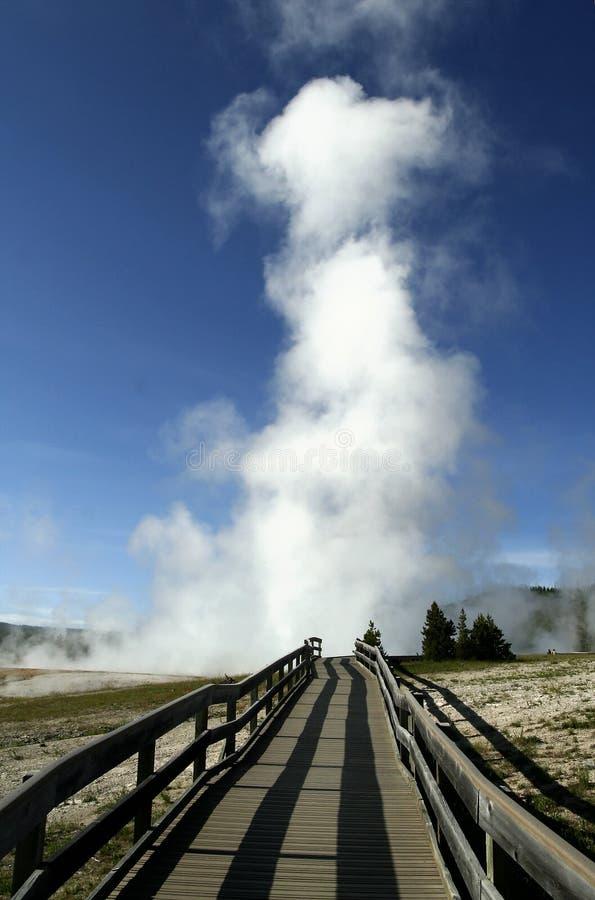 εθνικό yellowstone πάρκων στοκ εικόνες με δικαίωμα ελεύθερης χρήσης
