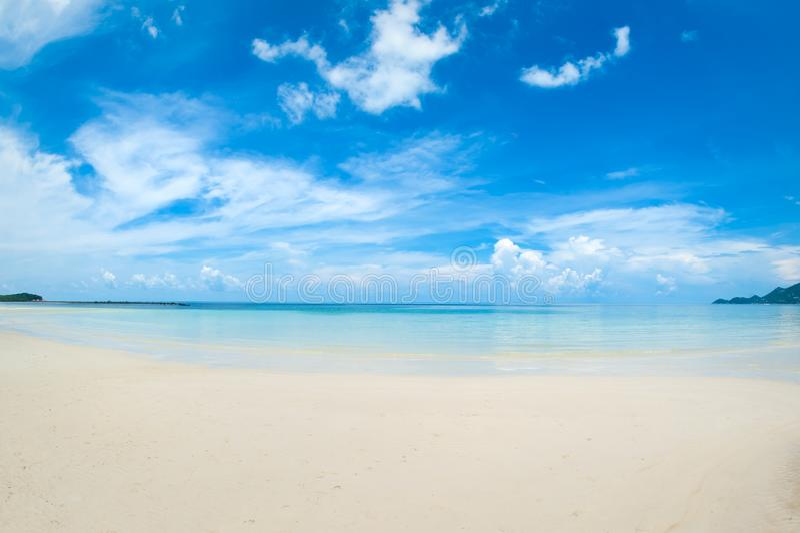 Ειδυλλιακή τροπική παραλία, φοίνικας, άσπρα άμμος και κρύσταλλο - καθαρίστε το νερό στοκ εικόνες