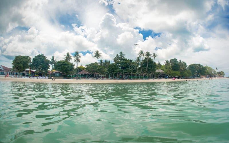 Ειδυλλιακή τροπική παραλία, φοίνικας, άσπρα άμμος και κρύσταλλο - καθαρίστε το νερό στοκ φωτογραφίες