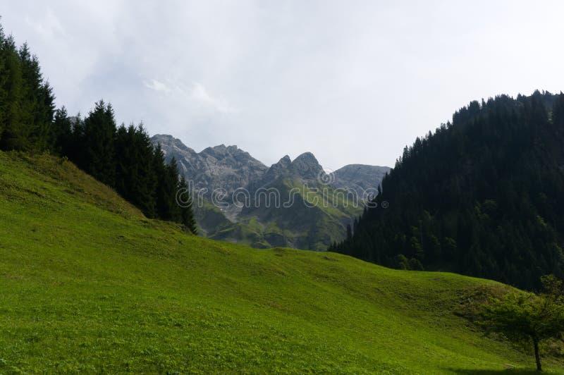 Ειδυλλιακό θερινό τοπίο με το ίχνος πεζοπορίας στις Άλπεις με τα όμορφα φρέσκα πράσινα λιβάδια βουνών, Allgäu Γερμανία στοκ φωτογραφία με δικαίωμα ελεύθερης χρήσης
