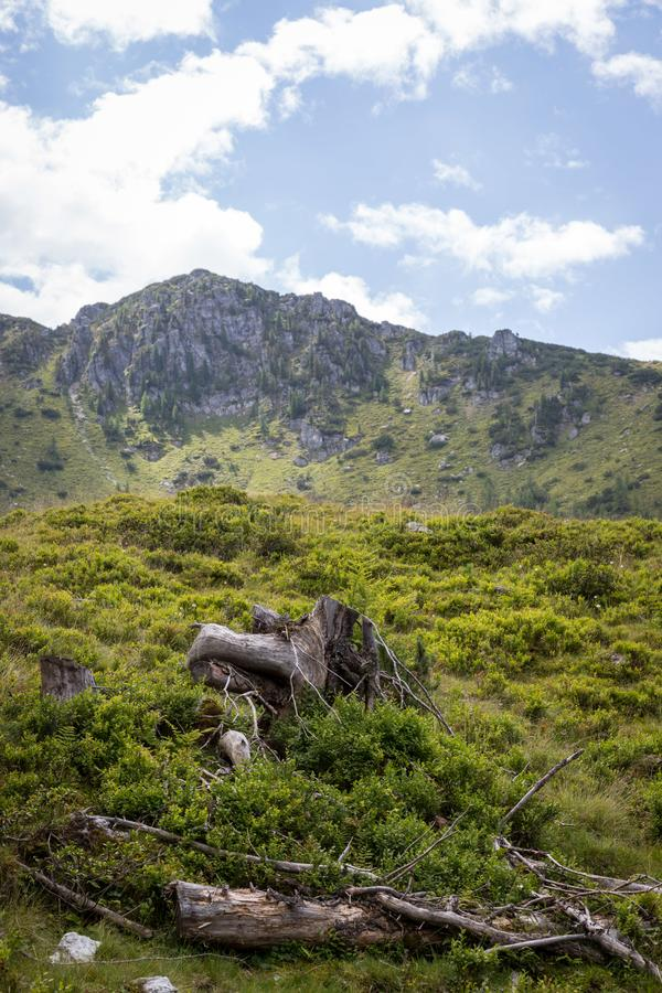 Ειδυλλιακό τοπίο βουνών στα όρη: Όμορφο τοπίο του λιβαδιού, των δέντρων, των βουνών και του μπλε ουρανού στοκ φωτογραφία