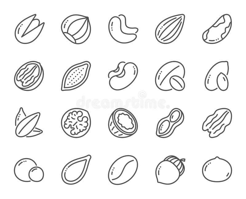 Εικονίδια γραμμών καρυδιών και σπόρων Φουντούκι, καρύδι αμυγδάλων και φυστίκι r ελεύθερη απεικόνιση δικαιώματος