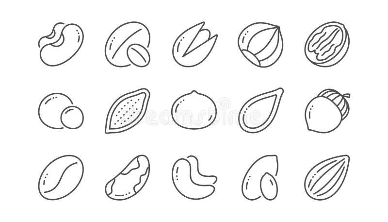 Εικονίδια γραμμών καρυδιών και σπόρων Φουντούκι, καρύδι αμυγδάλων και φυστίκι Γραμμικό σύνολο r διανυσματική απεικόνιση