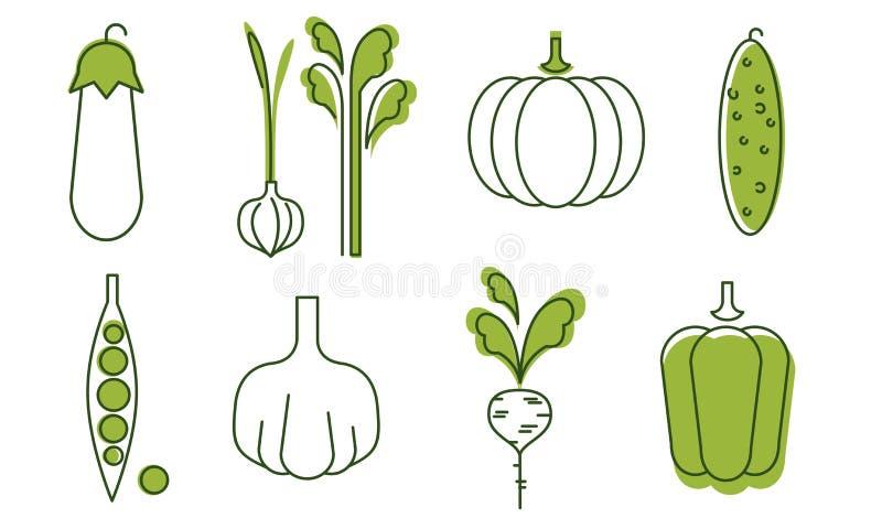 Εικονίδια φρέσκων λαχανικών καθορισμένα, μελιτζάνα, κρεμμύδι, σκόρδο, αγγούρι, πιπέρι, ραδίκι, πράσινα μπιζέλια, κολοκύθα, οργανι διανυσματική απεικόνιση