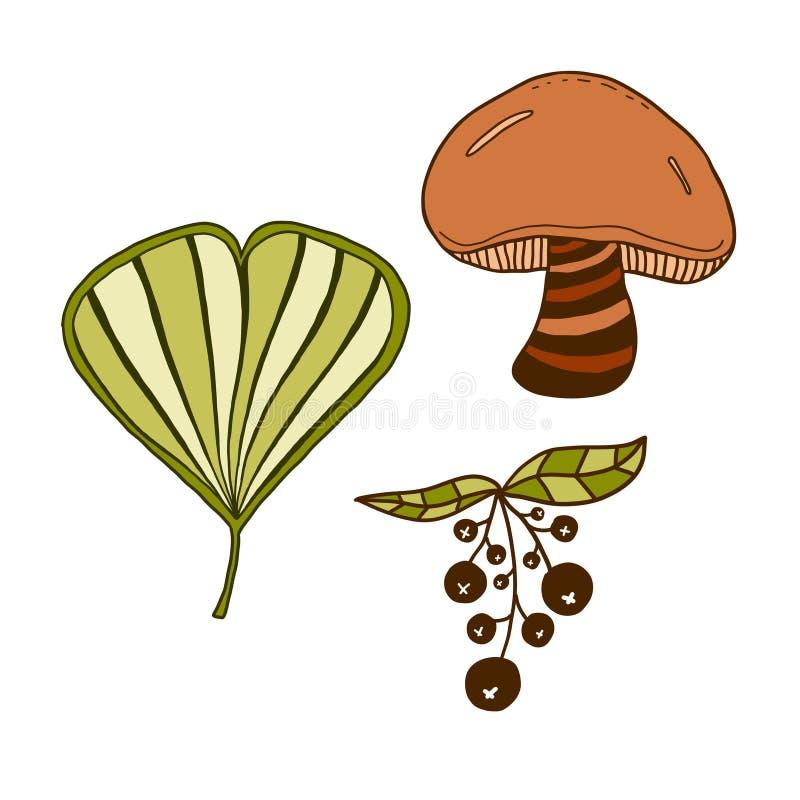 Εικονίδια φύσης φθινοπώρου Συρμένη χέρι τυπωμένη ύλη Σχέδιο αυτοκόλλητων ετικεττών ελεύθερη απεικόνιση δικαιώματος