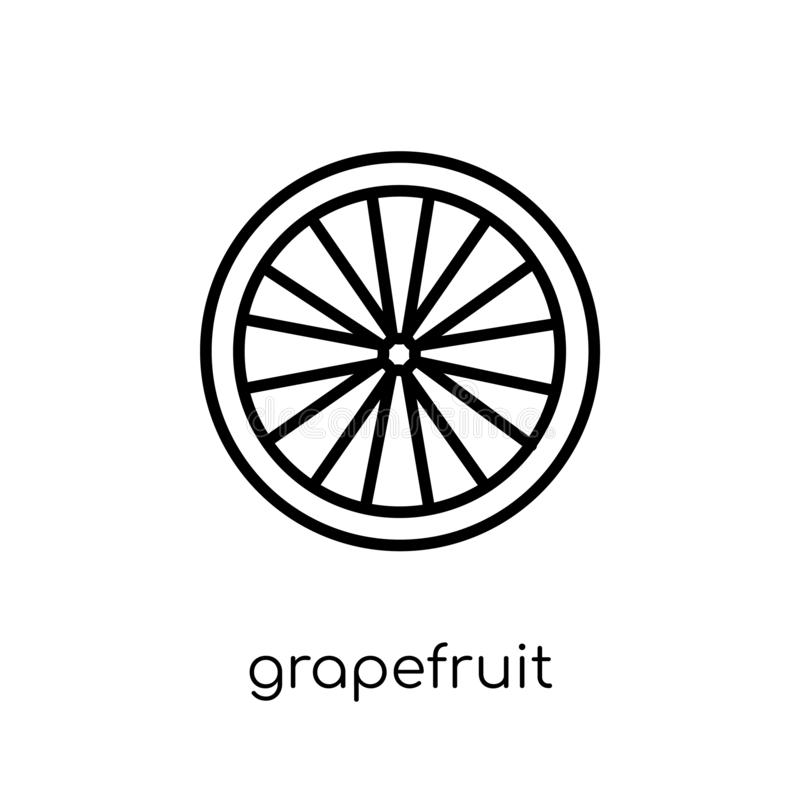 Εικονίδιο γκρέιπφρουτ από τη συλλογή φρούτων και λαχανικών απεικόνιση αποθεμάτων