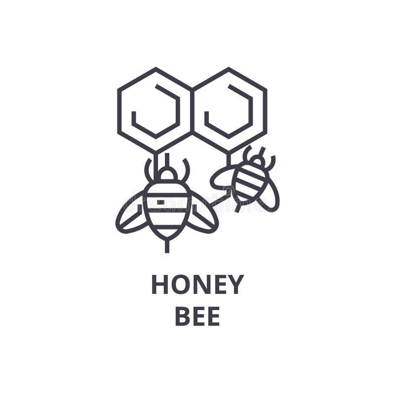 Εικονίδιο γραμμών μελισσών μελιού, σημάδι περιλήψεων, γραμμικό σύμβολο, διανυσματική, επίπεδη απεικόνιση διανυσματική απεικόνιση