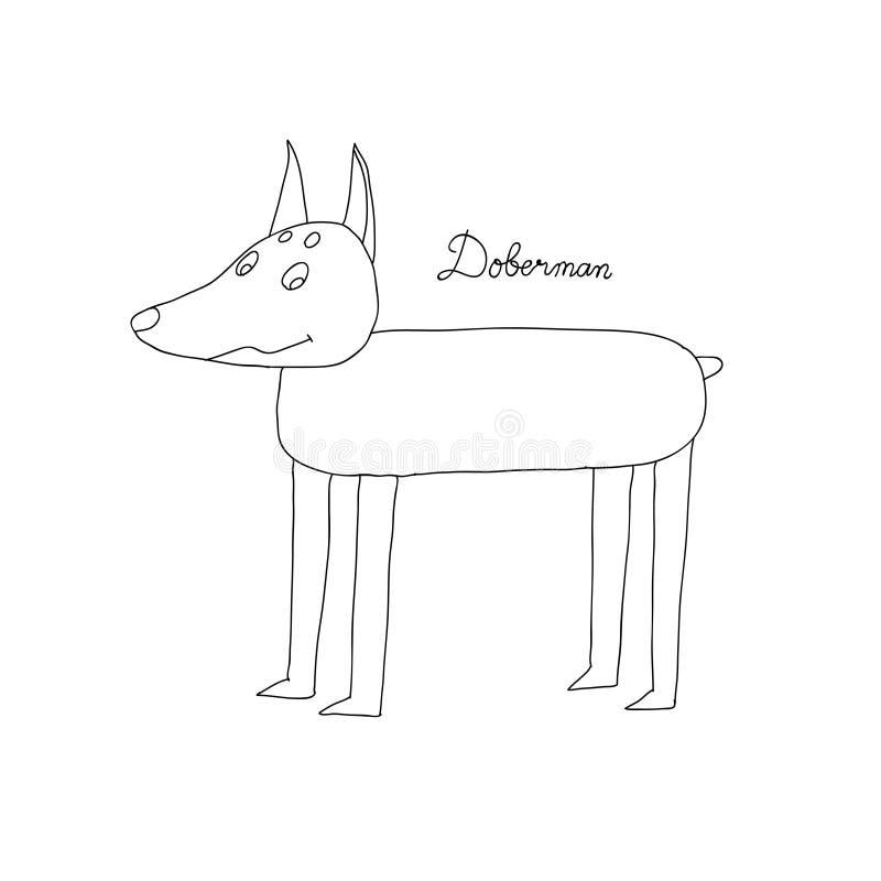 Εικονίδιο σκυλιών Doberman Γραμμικό σχέδιο συμβόλων σκυλιών Doberman από τη συλλογή σκυλιών Απλή διανυσματική απεικόνιση στοιχείω απεικόνιση αποθεμάτων