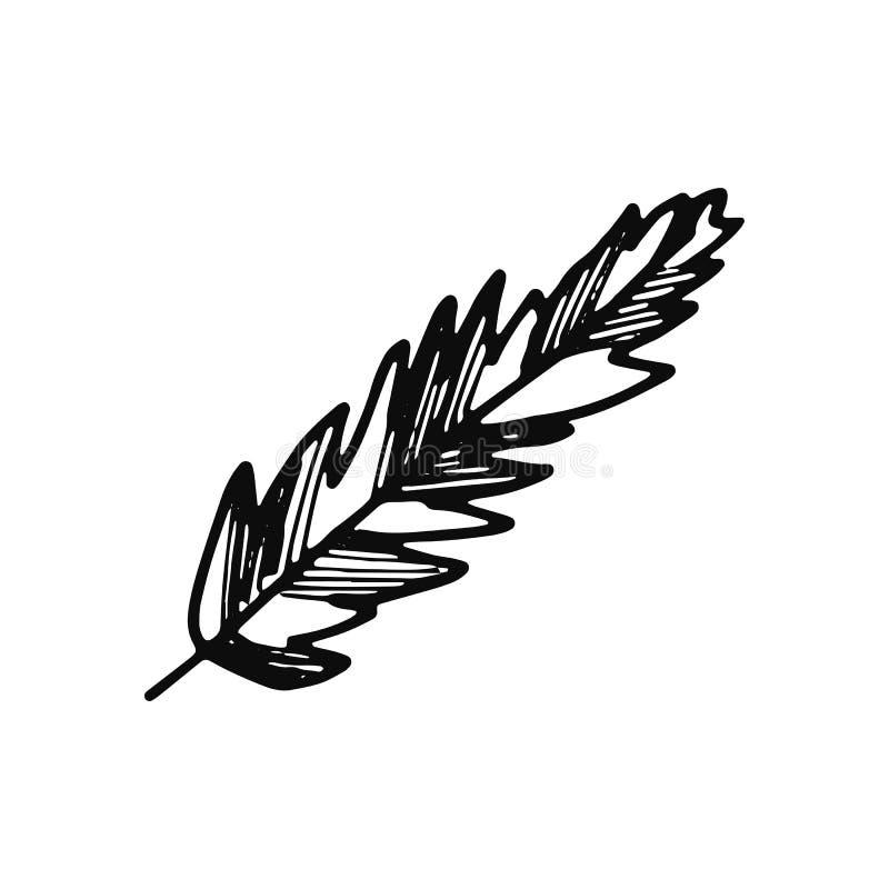 Εικονίδιο φτερών πουλιών απομονωμένος ο σκίτσο Μαύρος αντικειμένου διανυσματική απεικόνιση