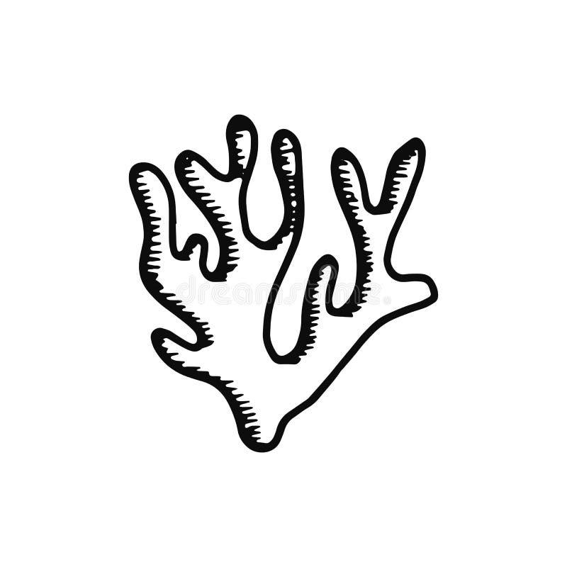 Εικονίδιο φυκιών απομονωμένος ο σκίτσο Μαύρος αντικειμένου απεικόνιση αποθεμάτων