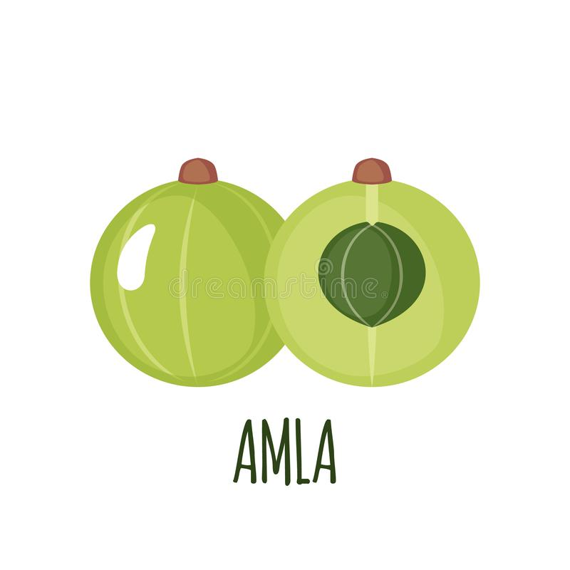 Εικονίδιο Amla στο επίπεδο ύφος που απομονώνεται στο λευκό απεικόνιση αποθεμάτων